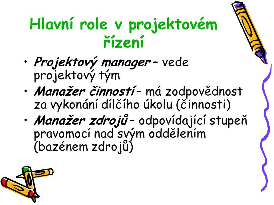 Hlavní role v projektovém řízení