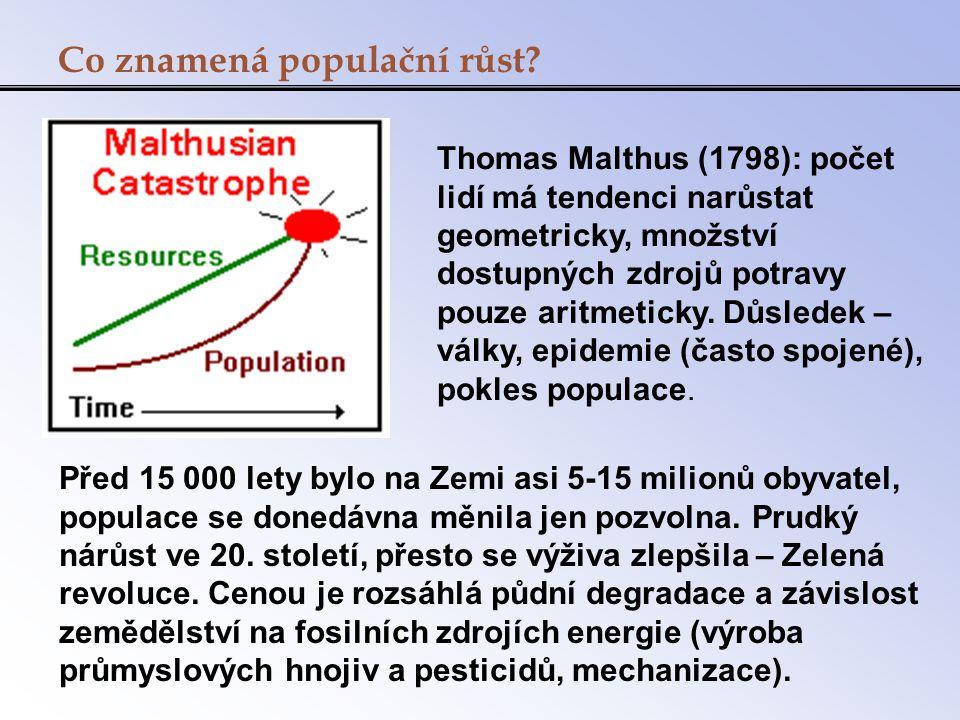 Co znamená populační růst