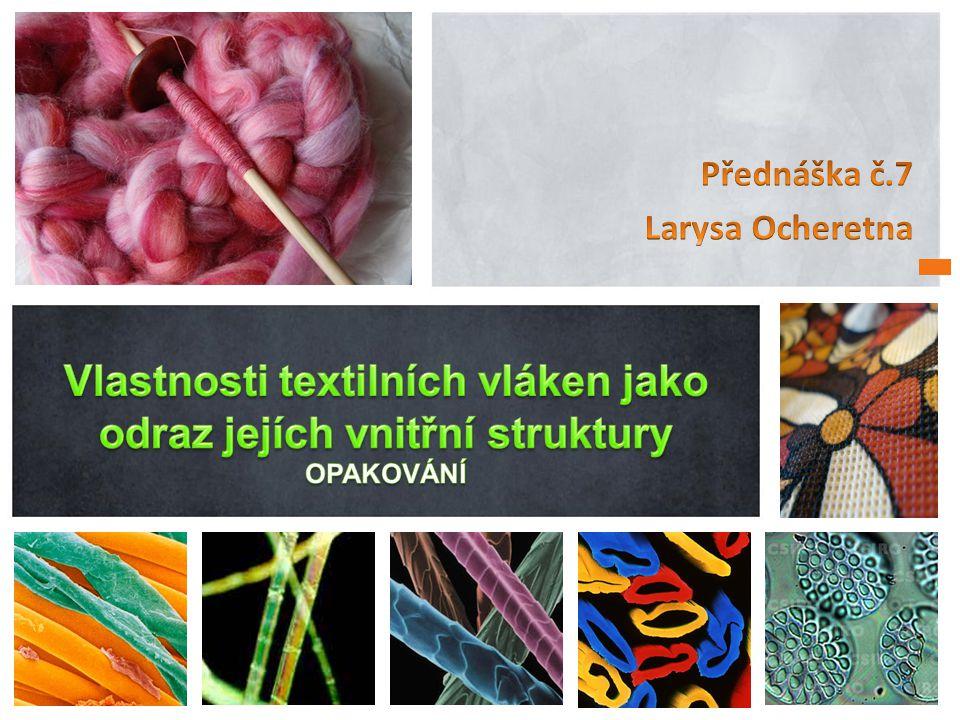 Přednáška č.7 Larysa Ocheretna.