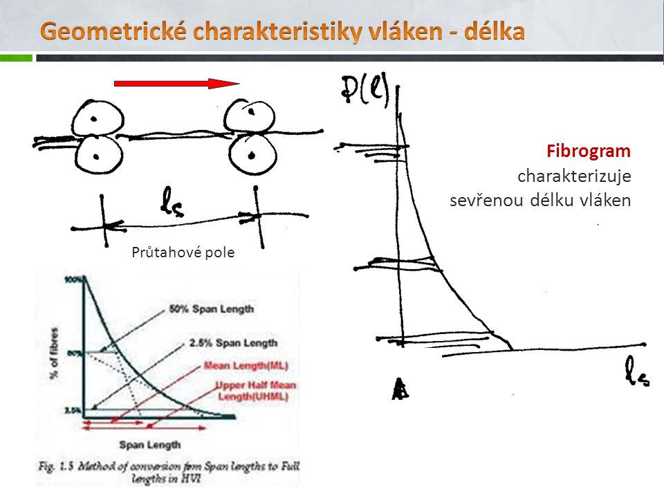 Geometrické charakteristiky vláken - délka