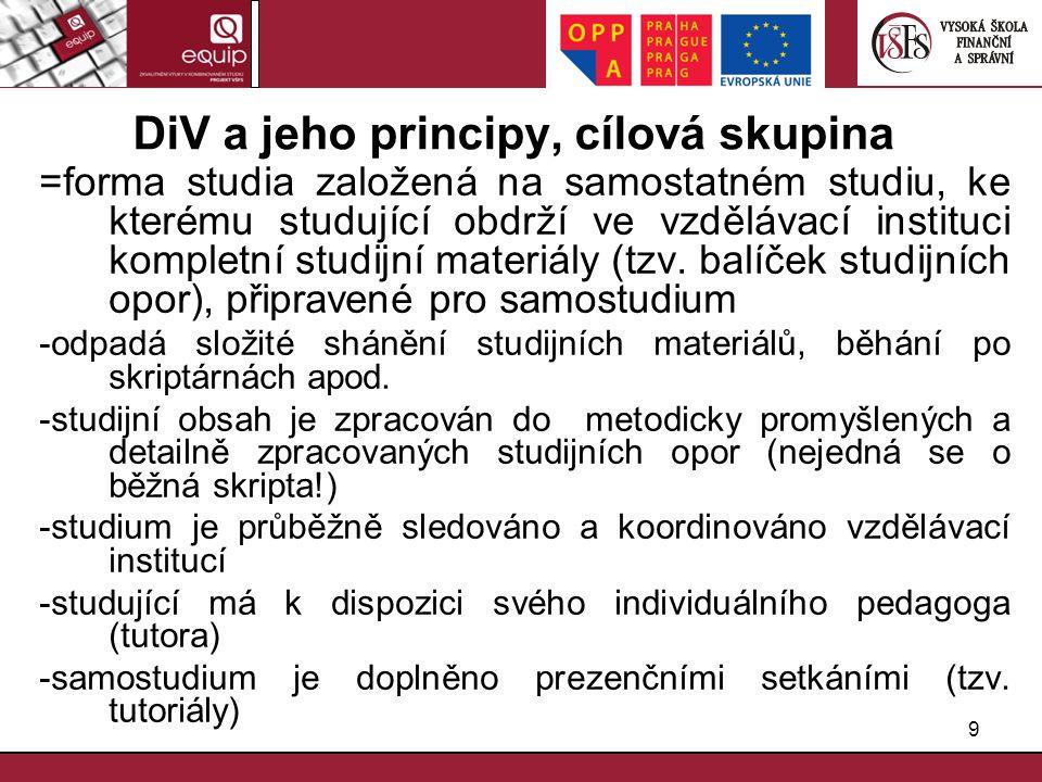 DiV a jeho principy, cílová skupina
