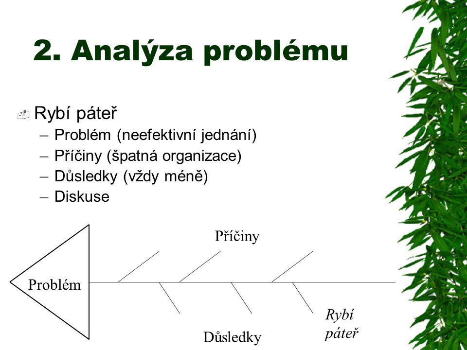 2. Analýza problému Rybí páteř Problém (neefektivní jednání)