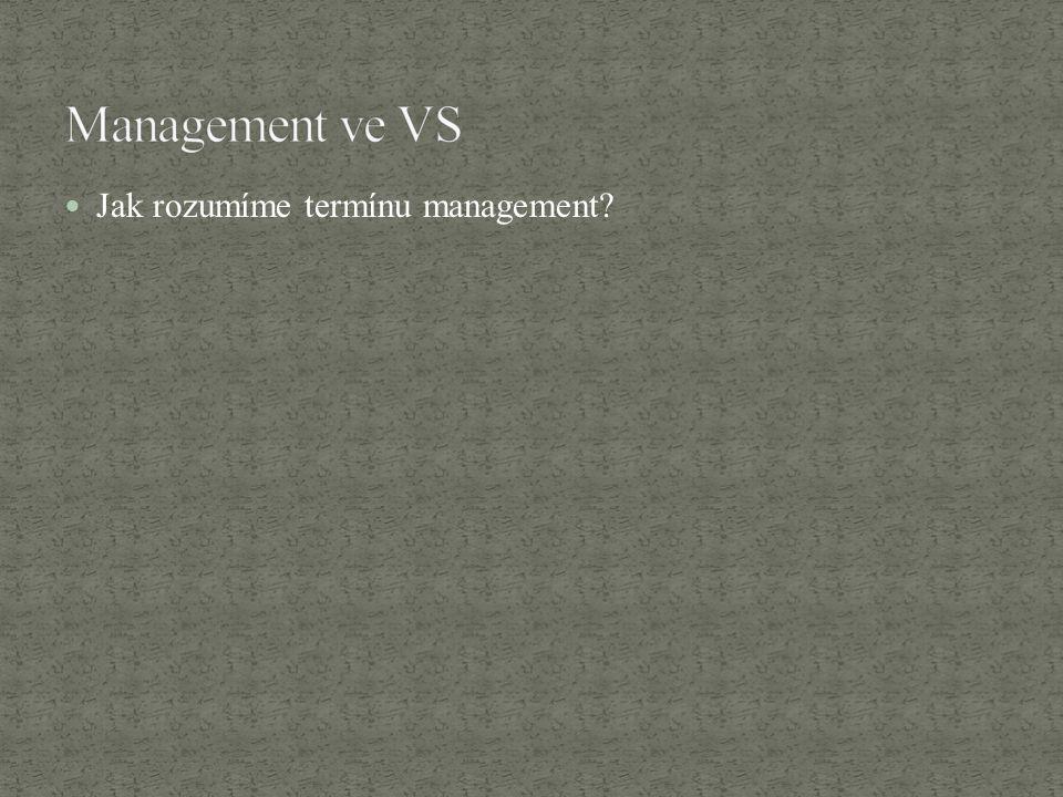 Management ve VS Jak rozumíme termínu management