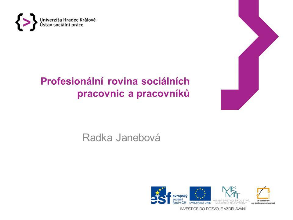 Profesionální rovina sociálních pracovnic a pracovníků
