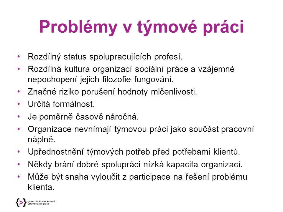 Problémy v týmové práci