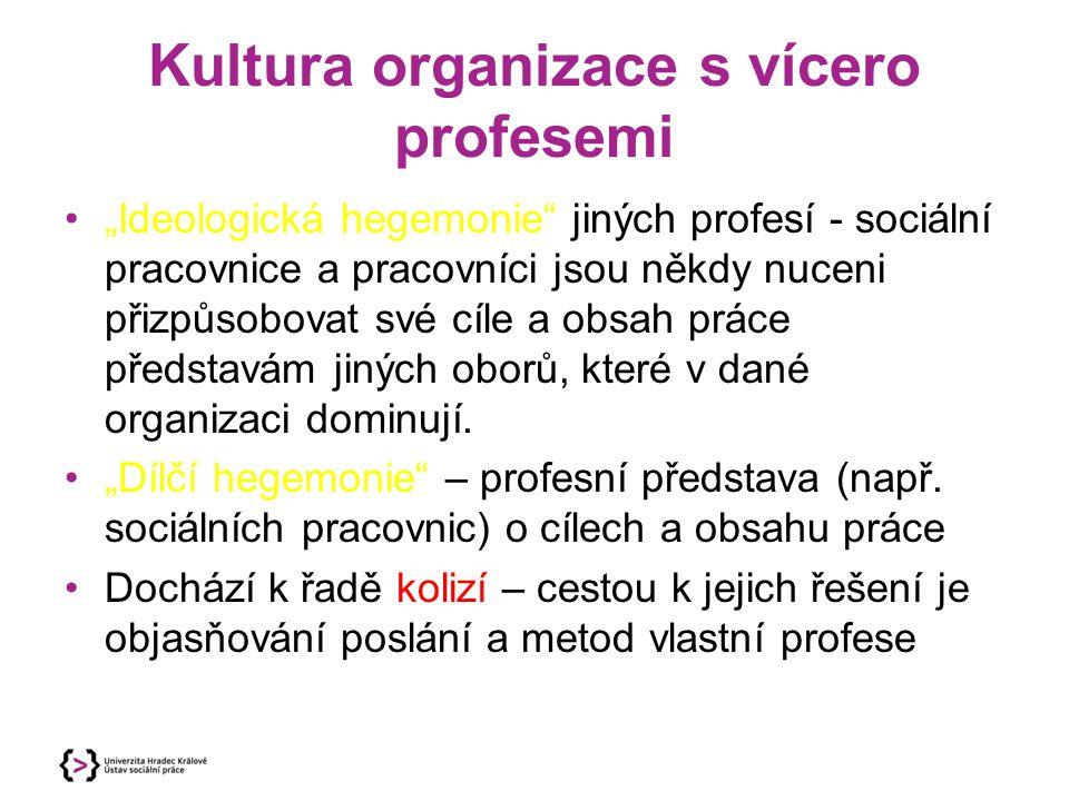 Kultura organizace s vícero profesemi