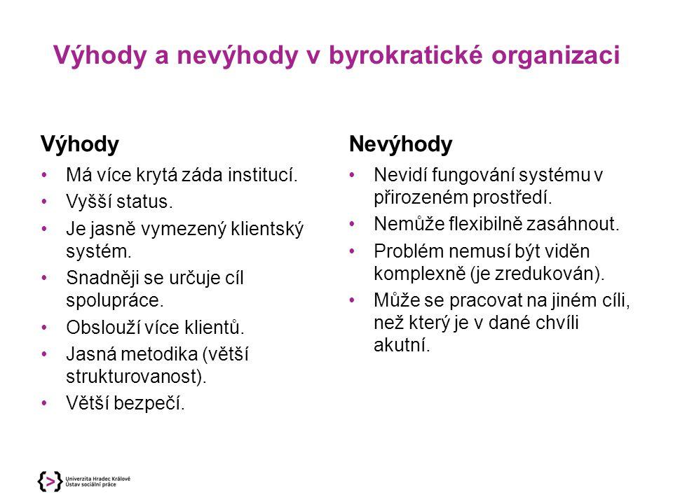 Výhody a nevýhody v byrokratické organizaci