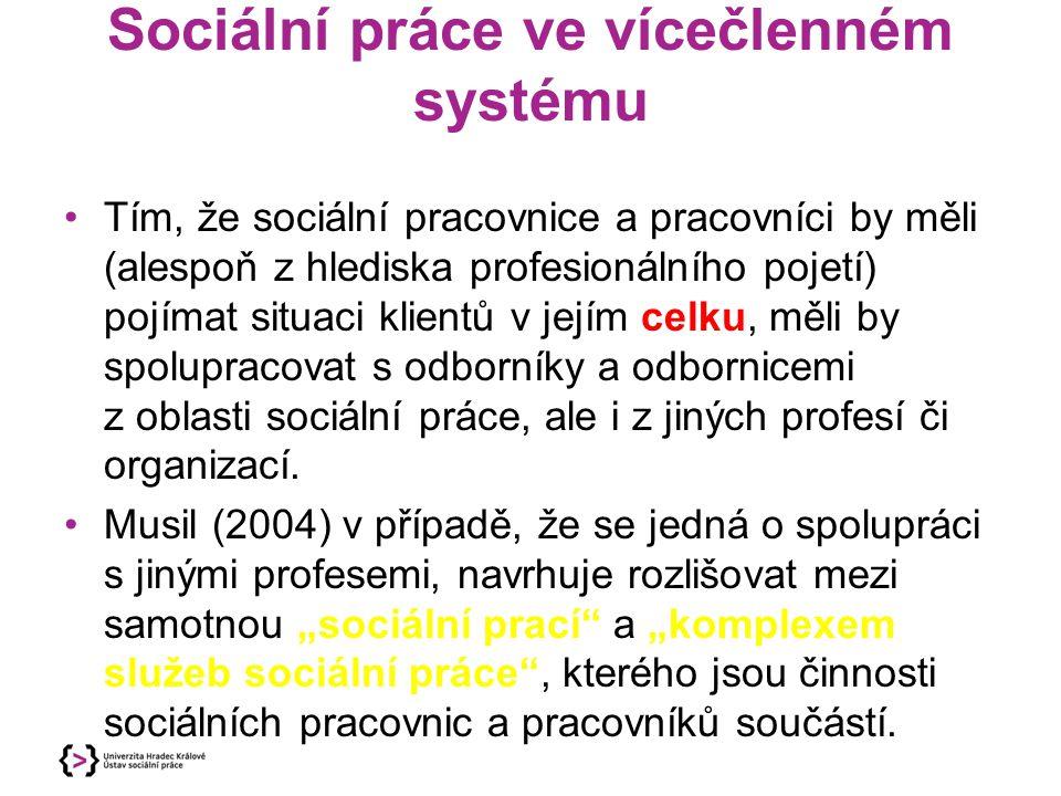 Sociální práce ve vícečlenném systému