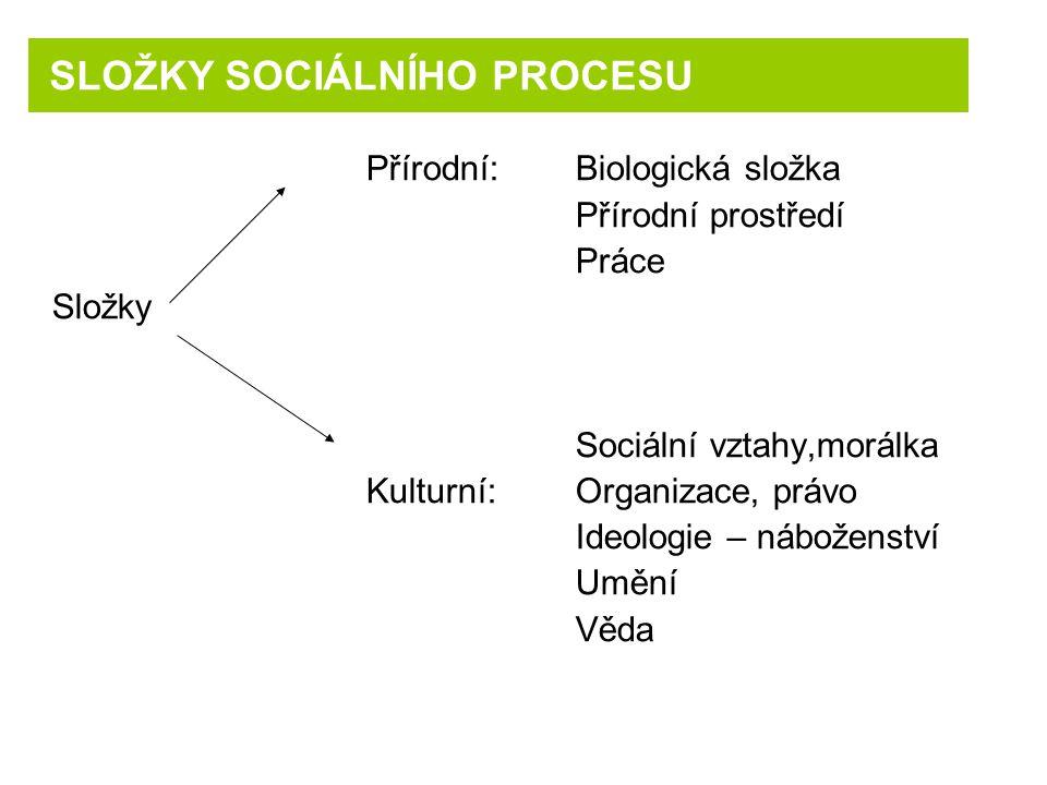 SLOŽKY SOCIÁLNÍHO PROCESU
