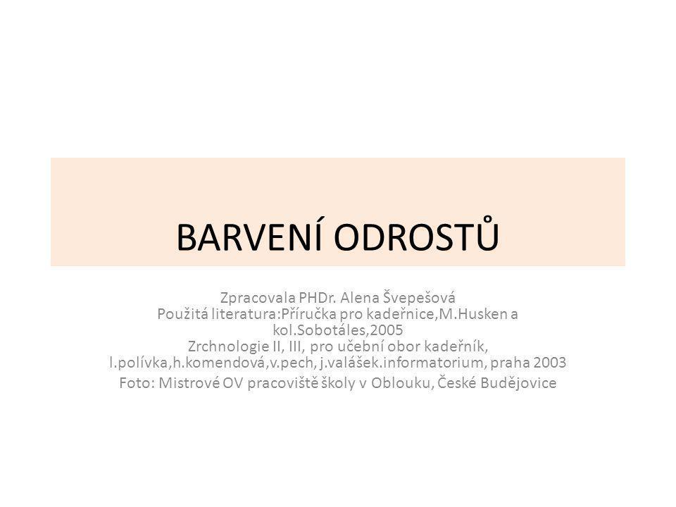 Foto: Mistrové OV pracoviště školy v Oblouku, České Budějovice