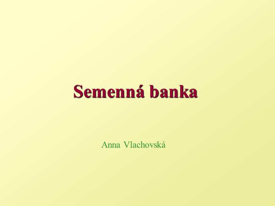 Semenná banka Anna Vlachovská