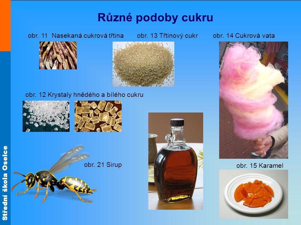 Různé podoby cukru obr. 11 Nasekaná cukrová třtina