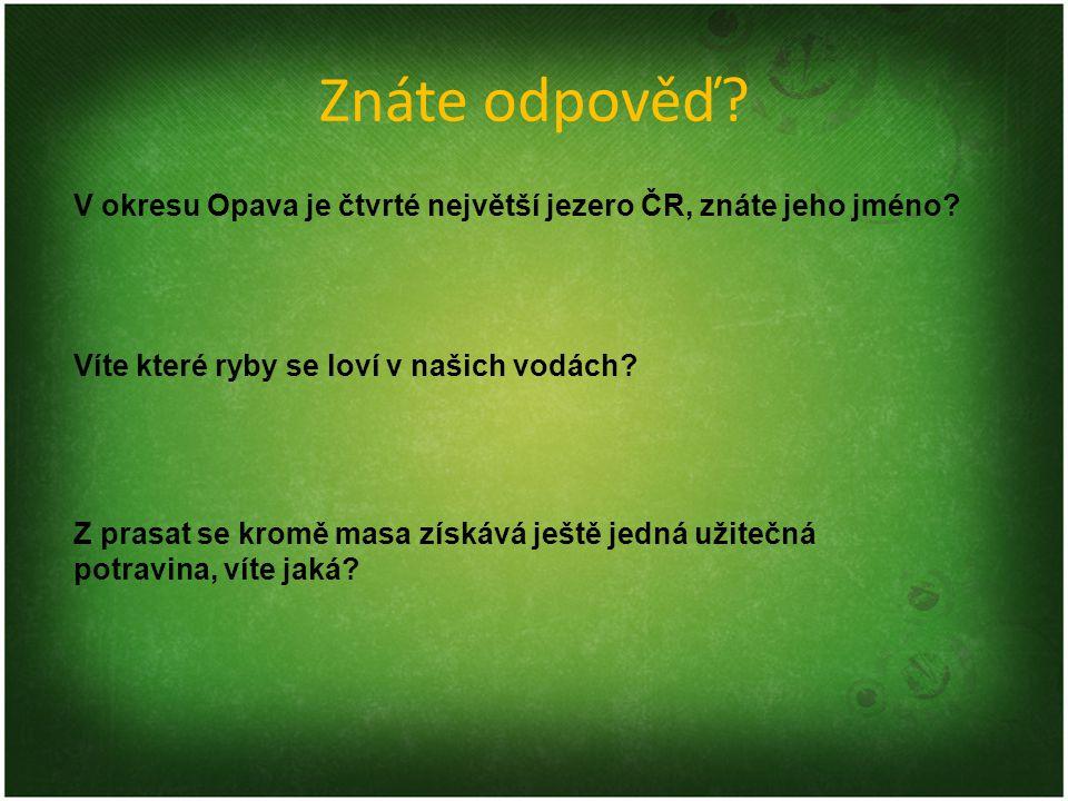 Znáte odpověď V okresu Opava je čtvrté největší jezero ČR, znáte jeho jméno Víte které ryby se loví v našich vodách