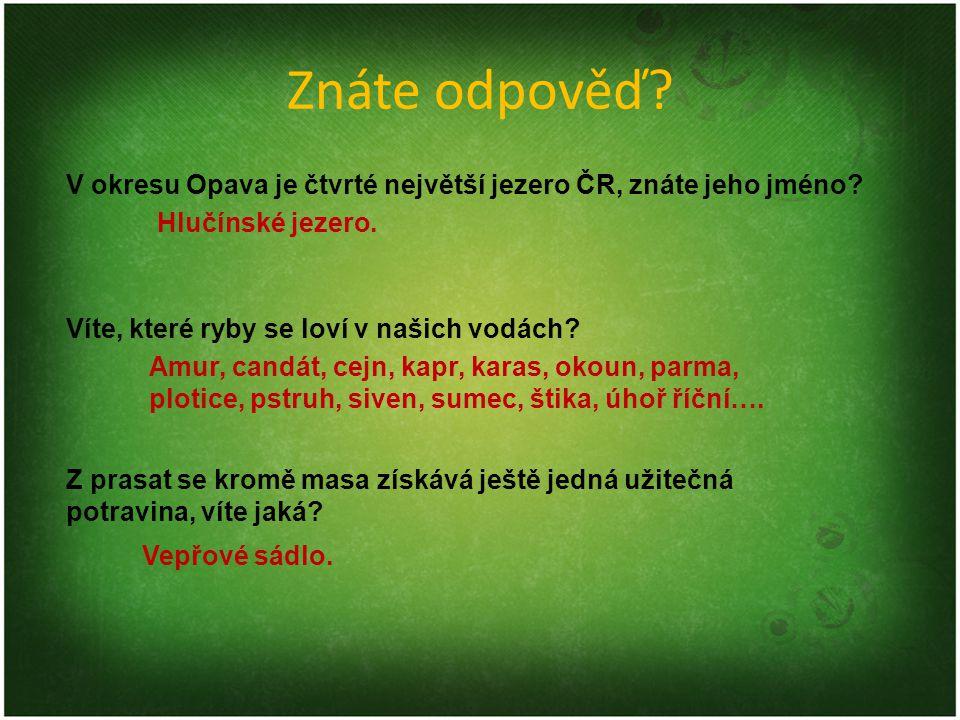 Znáte odpověď V okresu Opava je čtvrté největší jezero ČR, znáte jeho jméno Hlučínské jezero. Víte, které ryby se loví v našich vodách