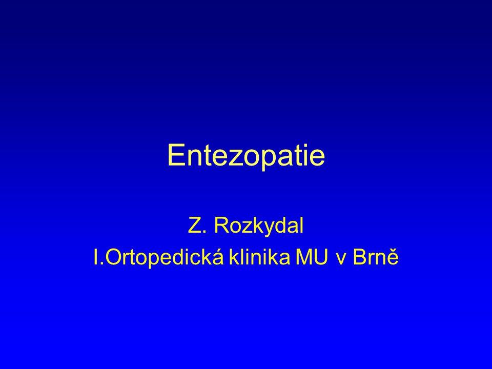 Z. Rozkydal I.Ortopedická klinika MU v Brně