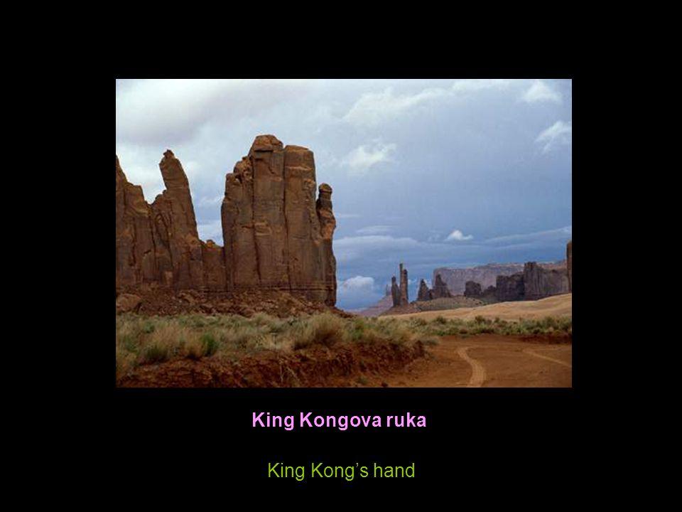 King Kongova ruka King Kong's hand