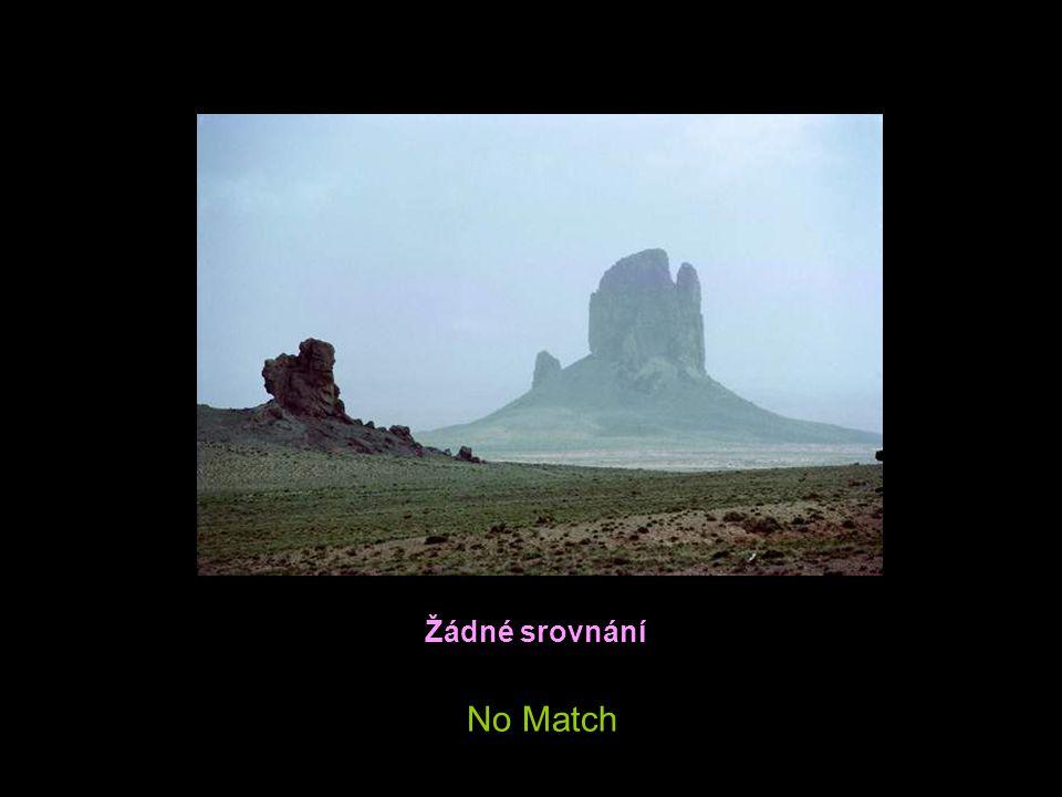 Žádné srovnání No Match