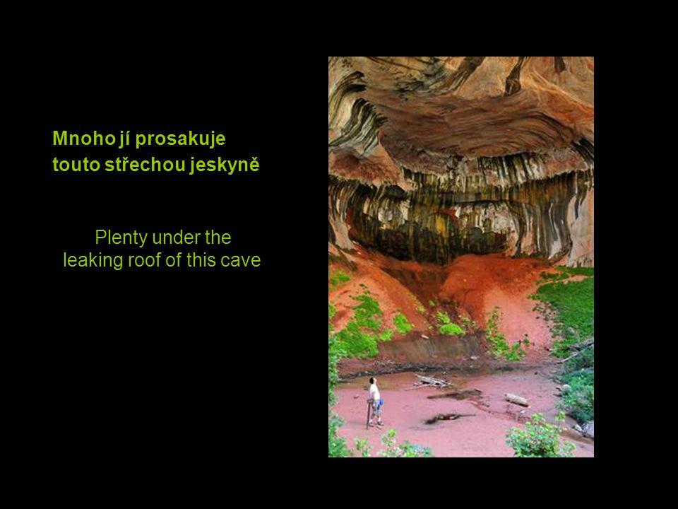 Mnoho jí prosakuje touto střechou jeskyně Plenty under the leaking roof of this cave