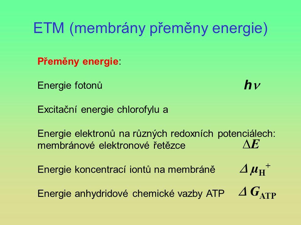 ETM (membrány přeměny energie)