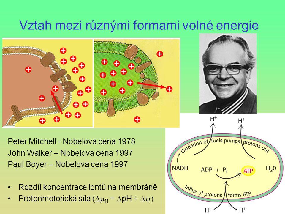 Vztah mezi různými formami volné energie