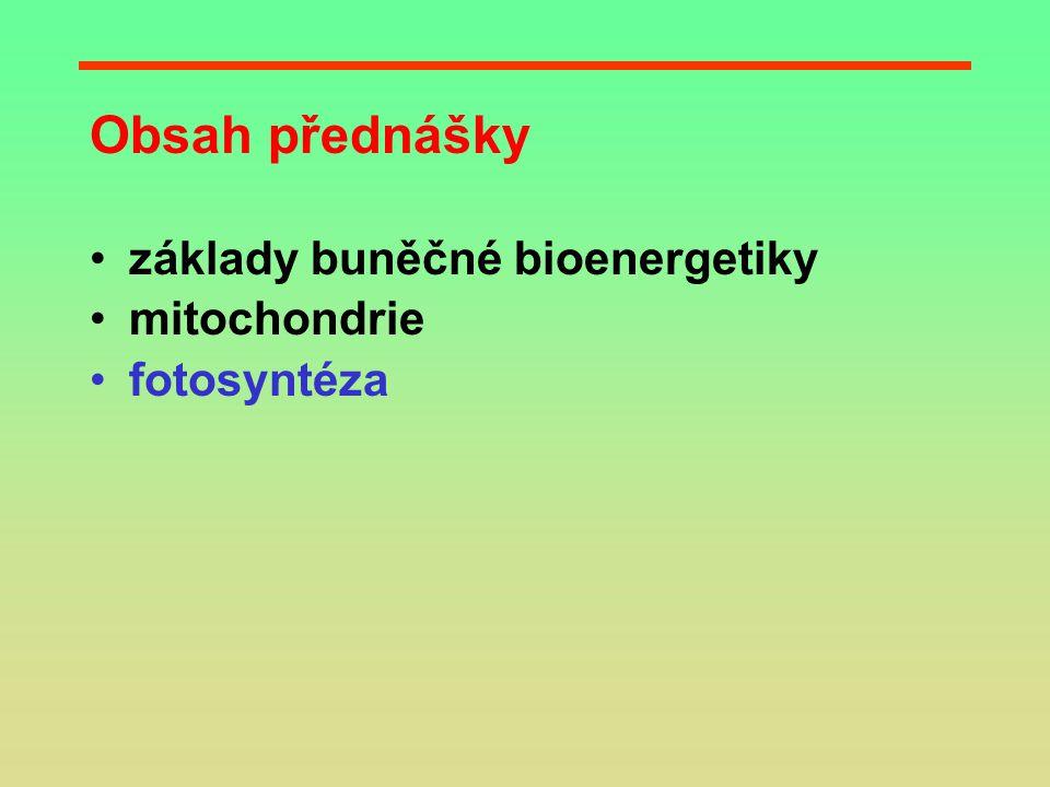 Obsah přednášky základy buněčné bioenergetiky mitochondrie fotosyntéza
