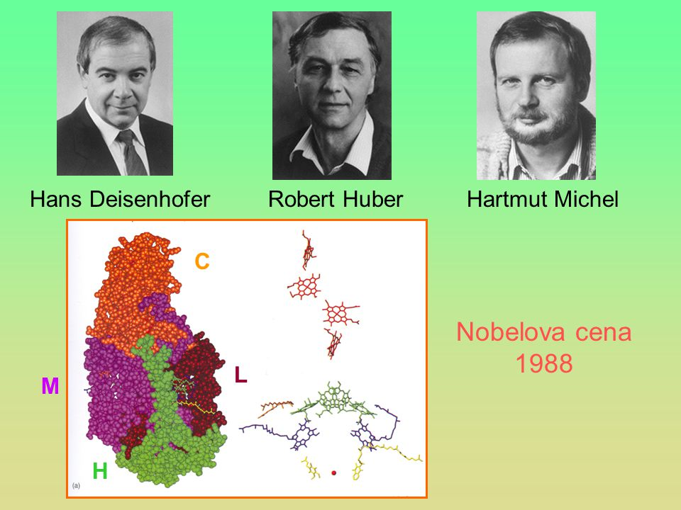 Nobelova cena 1988 Hans Deisenhofer Robert Huber Hartmut Michel C M L