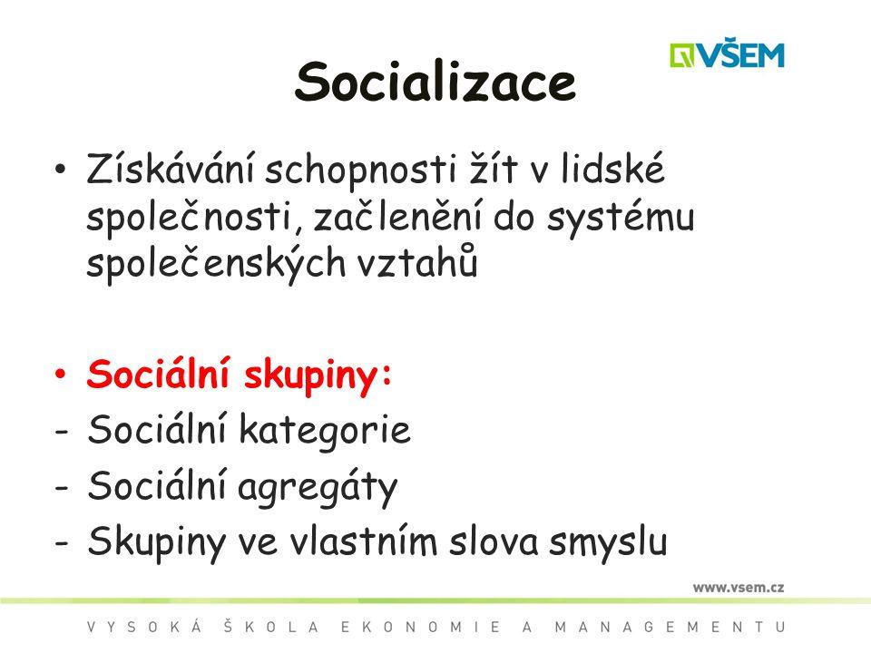 Socializace Získávání schopnosti žít v lidské společnosti, začlenění do systému společenských vztahů.