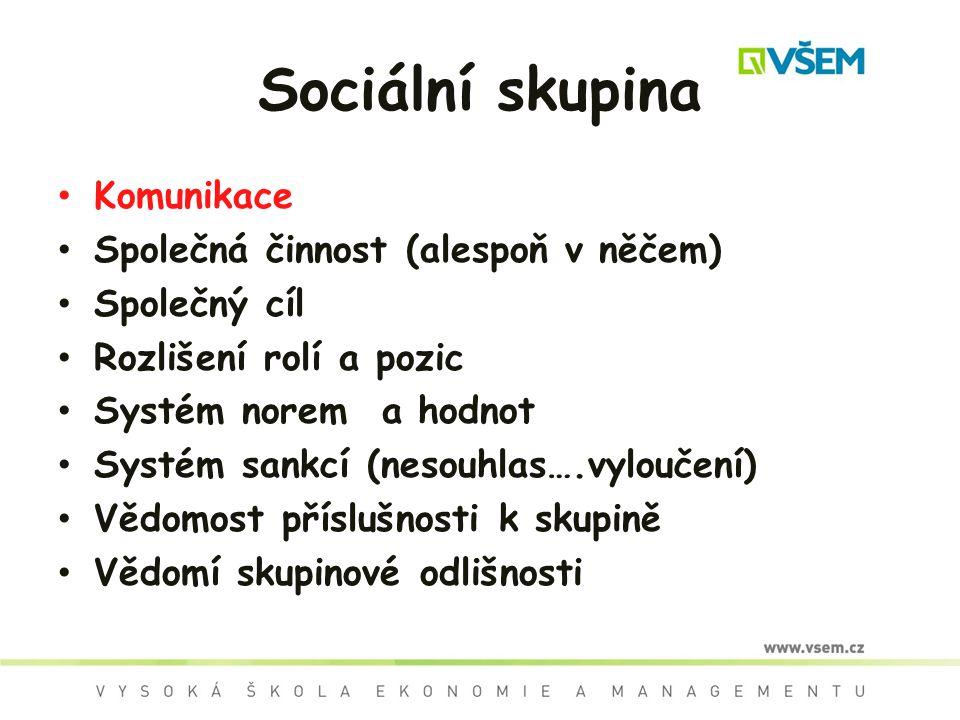 Sociální skupina Komunikace Společná činnost (alespoň v něčem)