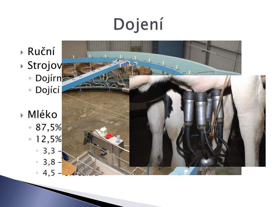 Dojení Ruční Strojové Mléko Dojírny Dojící automaty 87,5% vody