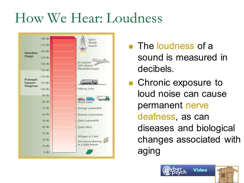 How We Hear: Loudness The loudness of a sound is measured in decibels.