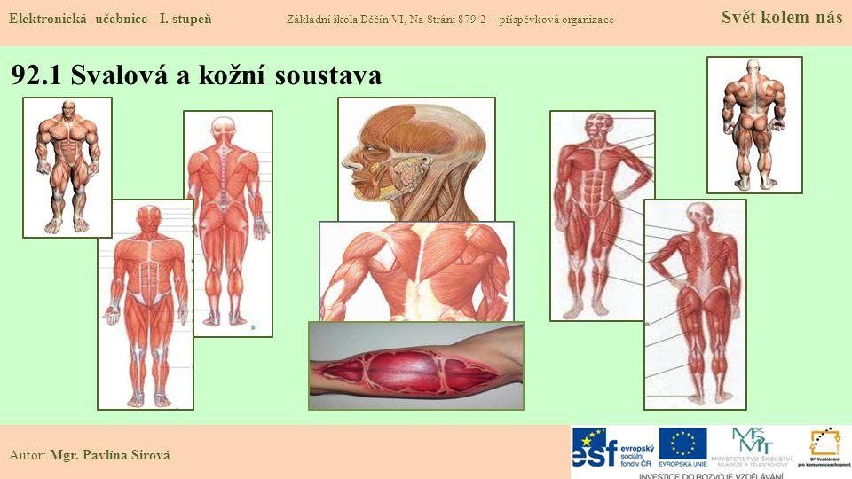92.1 Svalová a kožní soustava