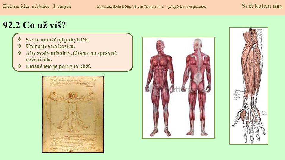 92.2 Co už víš Svaly umožňují pohyb těla. Upínají se na kostru.