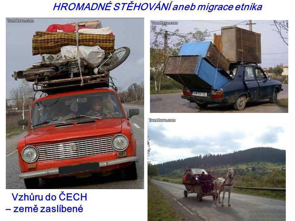 HROMADNÉ STĚHOVÁNÍ aneb migrace etnika