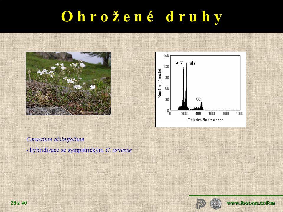 I n v a z n í d r u h y Vaccinium - 3x Lythrum salicaria 29 z 40 2x 3x