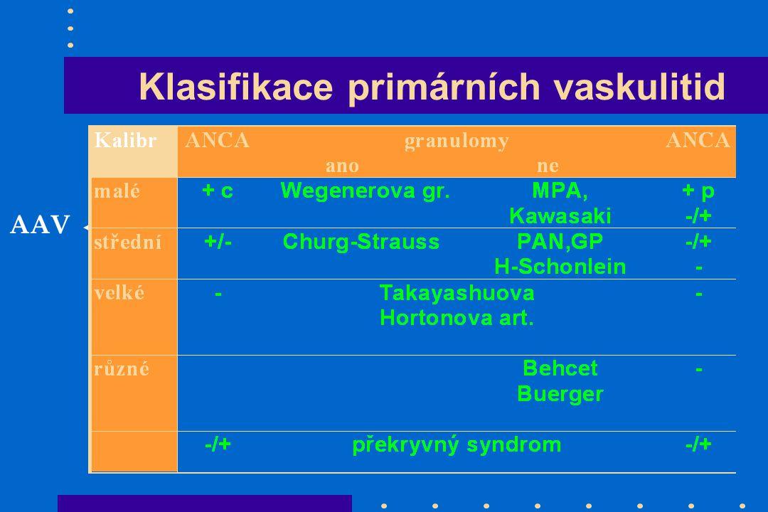 Klasifikace primárních vaskulitid