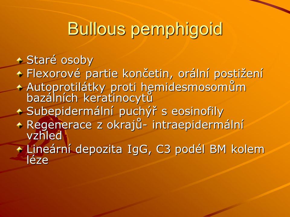 Bullous pemphigoid Staré osoby