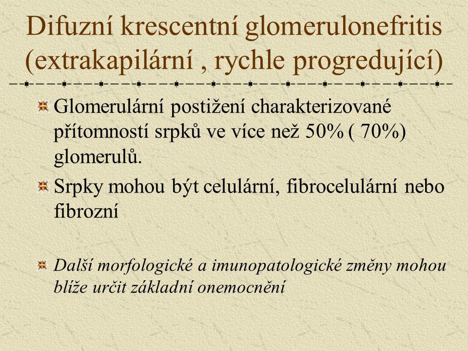Difuzní krescentní glomerulonefritis (extrakapilární , rychle progredující)