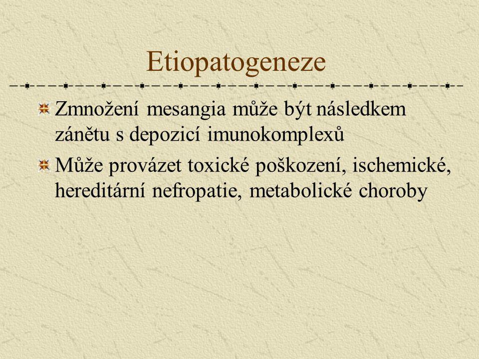 Etiopatogeneze Zmnožení mesangia může být následkem zánětu s depozicí imunokomplexů.