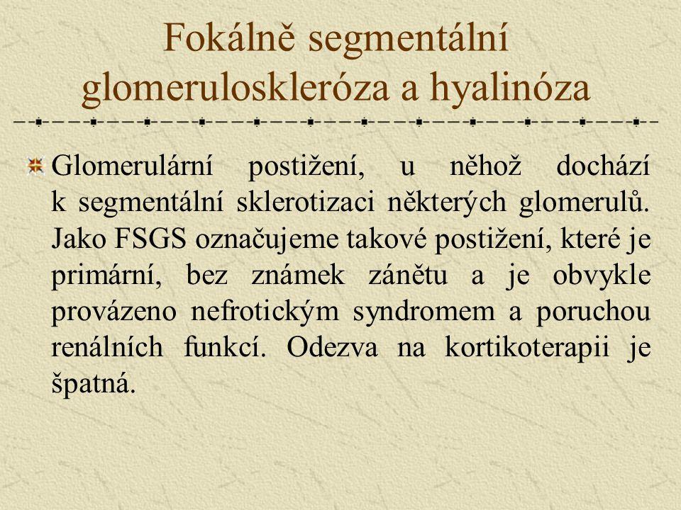 Fokálně segmentální glomeruloskleróza a hyalinóza