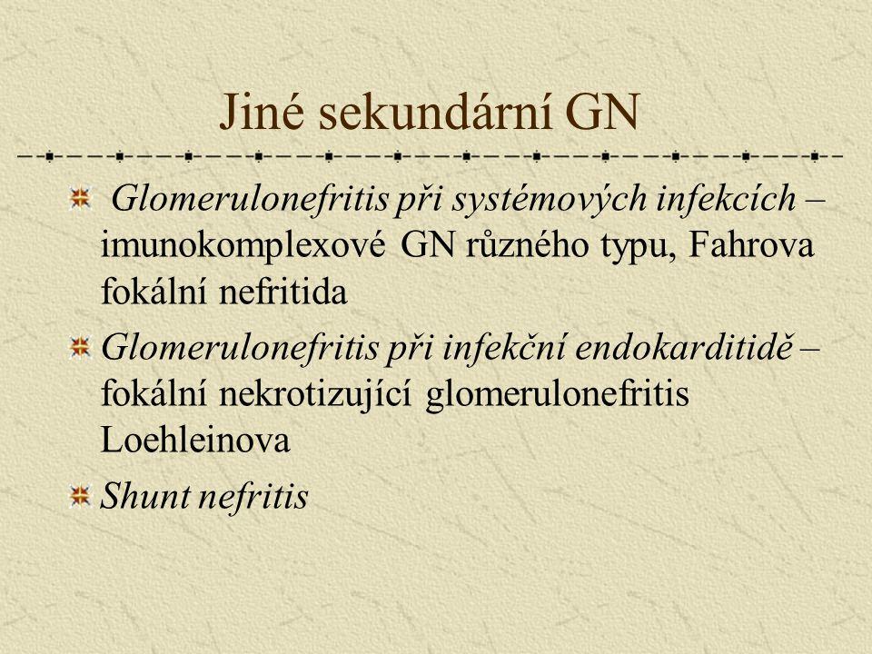 Jiné sekundární GN Glomerulonefritis při systémových infekcích – imunokomplexové GN různého typu, Fahrova fokální nefritida.
