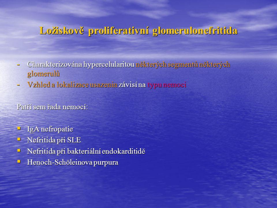 Ložiskově proliferativní glomerulonefritida