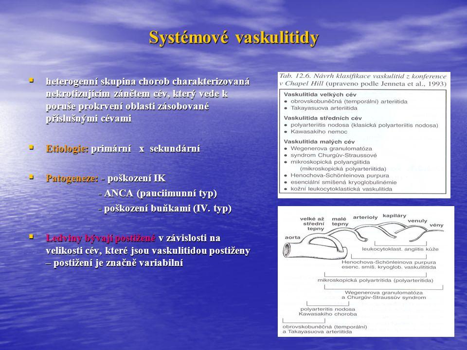 Systémové vaskulitidy