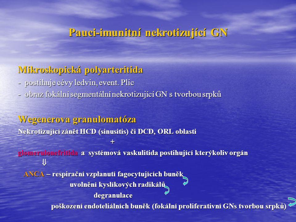 Pauci-imunitní nekrotizující GN
