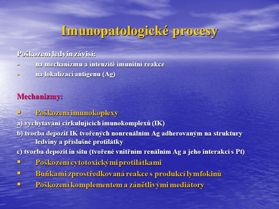 Imunopatologické procesy