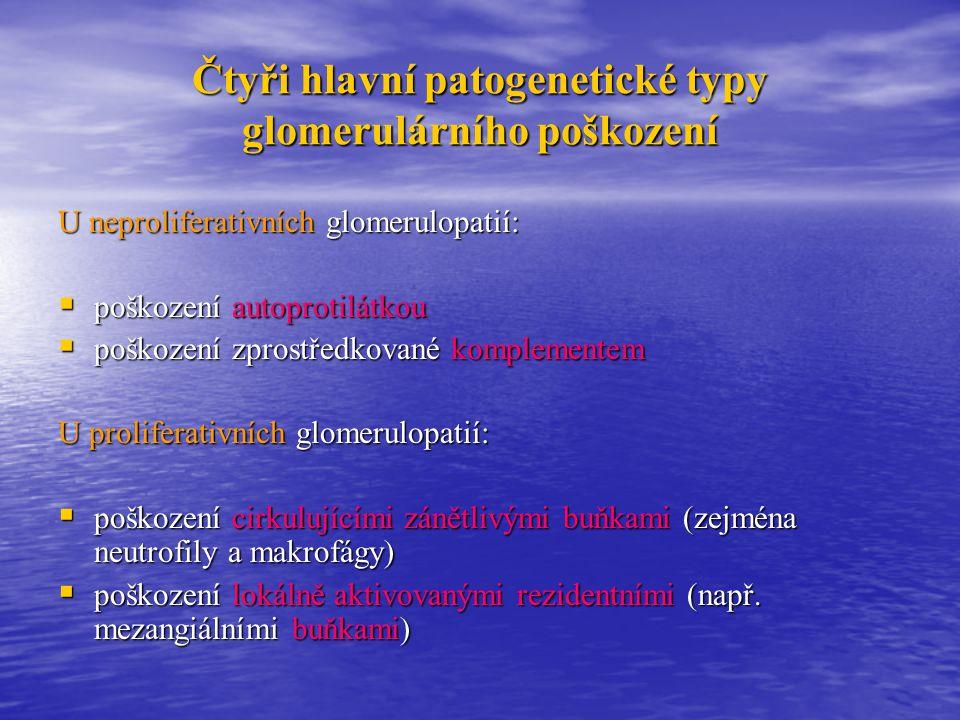 Čtyři hlavní patogenetické typy glomerulárního poškození
