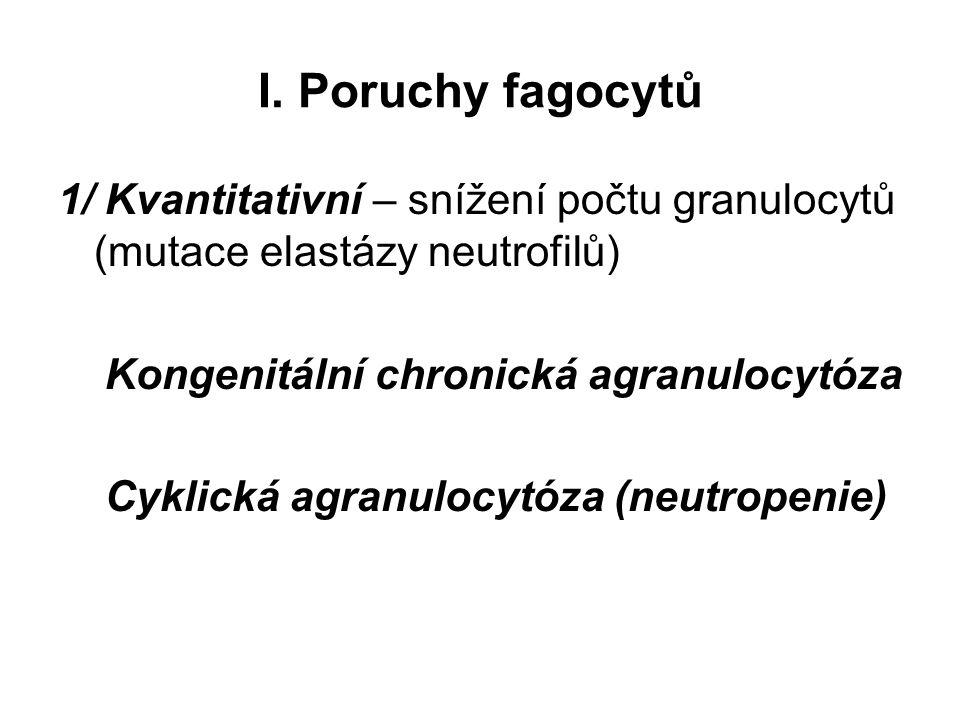 I. Poruchy fagocytů 1/ Kvantitativní – snížení počtu granulocytů (mutace elastázy neutrofilů) Kongenitální chronická agranulocytóza.
