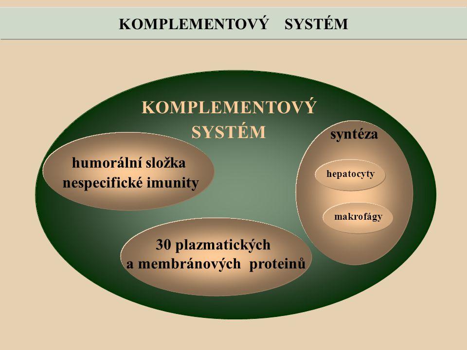 a membránových proteinů