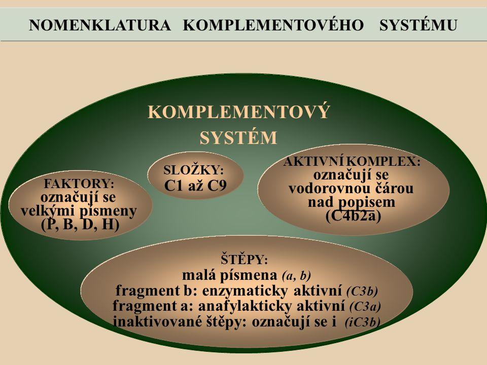KOMPLEMENTOVÝ SYSTÉM NOMENKLATURA KOMPLEMENTOVÉHO SYSTÉMU