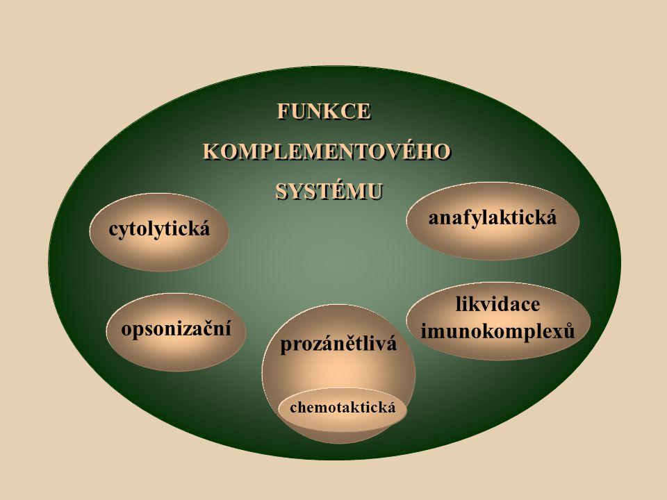 FUNKCE KOMPLEMENTOVÉHO SYSTÉMU anafylaktická cytolytická likvidace
