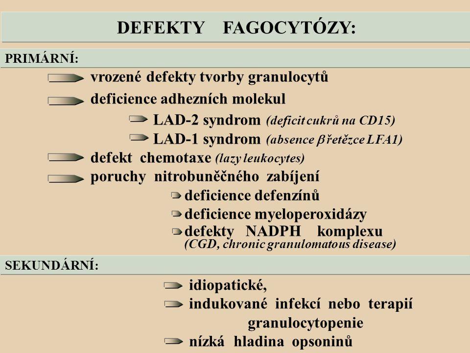 DEFEKTY FAGOCYTÓZY: vrozené defekty tvorby granulocytů